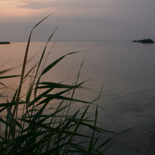 Dawn across the Goksu Marshes, Southern Turkey