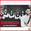 Haramiler - Mavi Duvar mp3