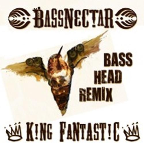 Bassnectar - Bass Head (King Fantastic Remix)