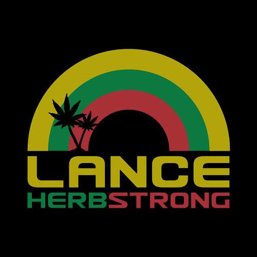 Lance Herbstrong Lollapalooza 2010 DJ set