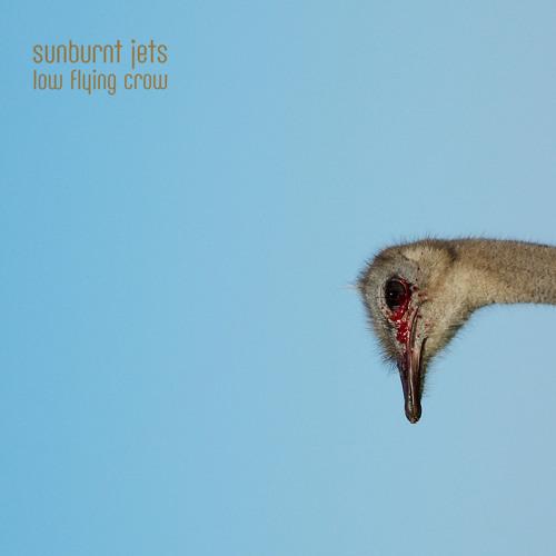 Sunburnt Jets - Low Flying Crow