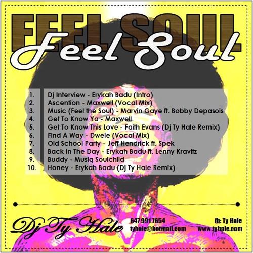 Feel Soul - Various Artists (Dj Ty Hale Mini Mix)