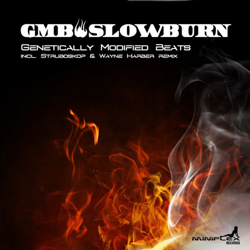 G.M.B - Slow Burn (Preview) Available on Mini Flex Records