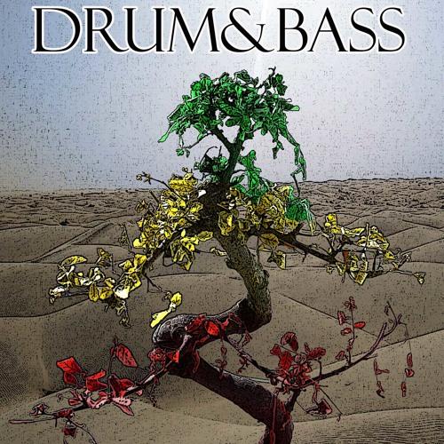 DUBWIZE Drum&Bass
