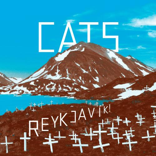 Cats - Reykjavík!