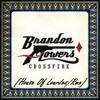 Brandon Flowers - Crossfire (House Of Lourdes Rmx)