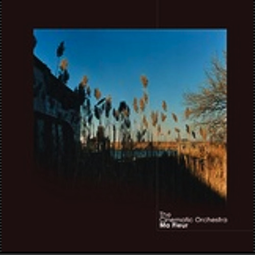 The Cinematic Orchestra  : Child Song feat Eska  [Taylor McFerrin Sao Paulo Remix]