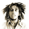 Bob Marley vs. Lupe Fiasco vs. James Brown - Could You Be Kicked, Pushed & Loved [DJ Axel]