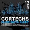 Cortechs - Slow Wave Sleep (Morgan Tomas Repaint)