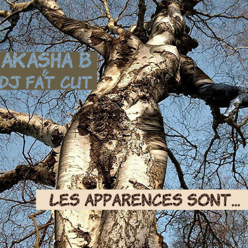 Les apparences - Akasha B. & DJ Fatcut