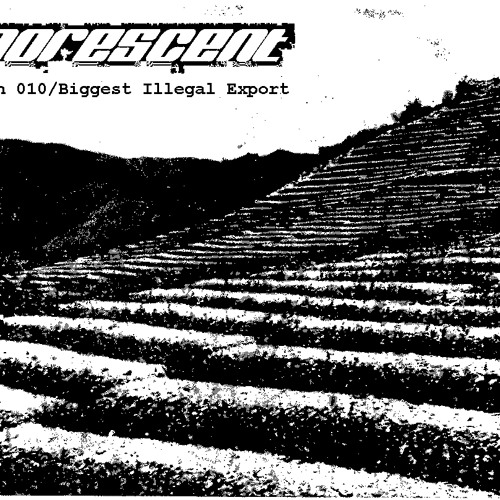 Sonorescent - Propagation 010 - Biggest Illegal Export (No Intro Just music Update)