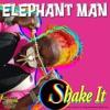 Elephant Man SHAKE IT sound clip (30sec) TBR 2010