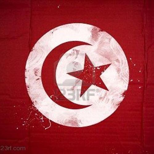 Tunisian DJs & Producers
