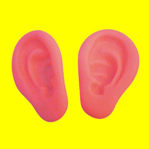 Earjaculation (Special DUBBASS Mix)