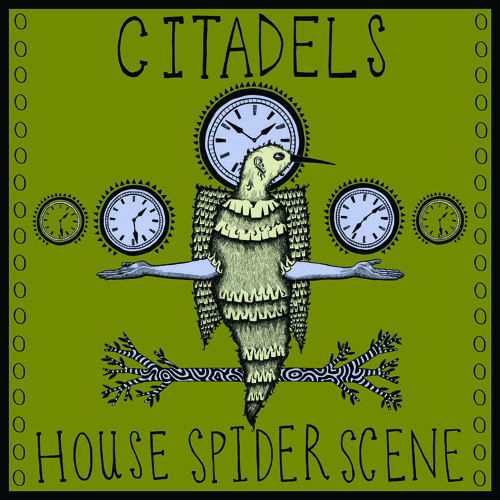 House Spider Scene
