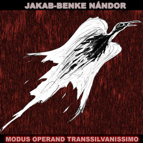 05 Jakab-Benke Nándor - Psychedelia Trip Renewed