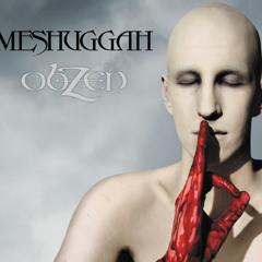 MESHUGGAH - Bleed