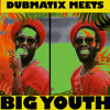 Aggrovated Dub (feat. Big Youth) by dubmatix