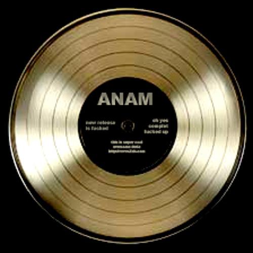 Anamkhaï + Beastie Boys - Intergalactic [live]