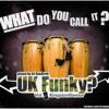Digital Dubstar - It's UK Funky (UKFunky) mp3