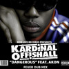 Kardinal Offishall ft Akon - Dangerous (FeueR Dub Mix) mp3