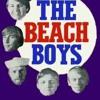 The Beach Boys - California Girls (Demoe Beats Remix)