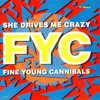 She Drives Me Crazy (The Justin Strauss Remix) Fine Young Cannibals