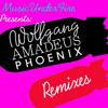 Phoenix - Girlfriend (rendy's remix)