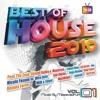 Steve Aoki - I'm In The House Ft. [[[zuper blahq]]] (Grandtheft Remix) [DIM MAK] 2010