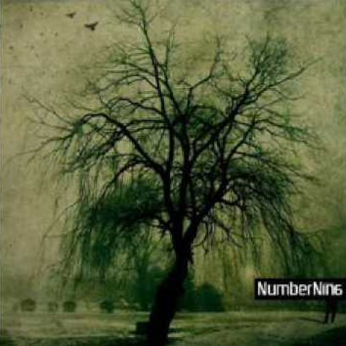 NumberNin6 vs. William Fitzsimmons - What You've Done