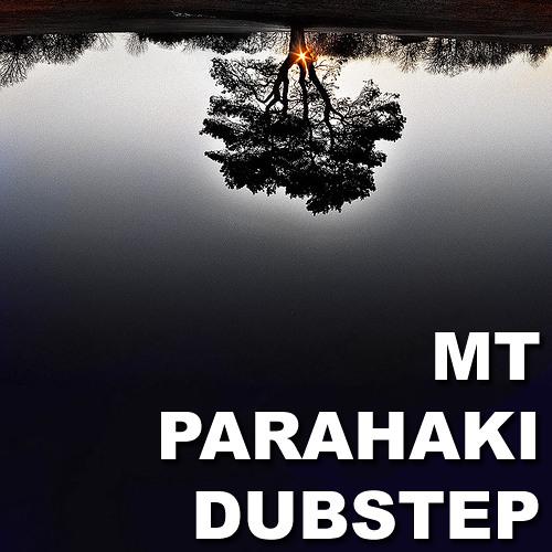 Tetris (Dubstep Remix) - Mt Parahaki Dubstep