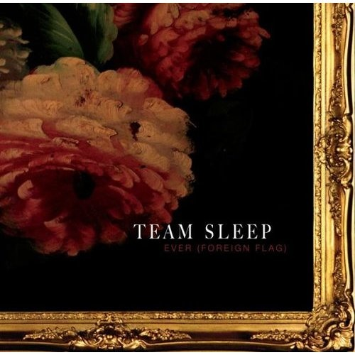 Team Sleep - Ever (Shok's Insomniamatique Remix)