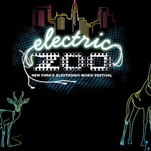 Diplo- Electric Zoo 2010