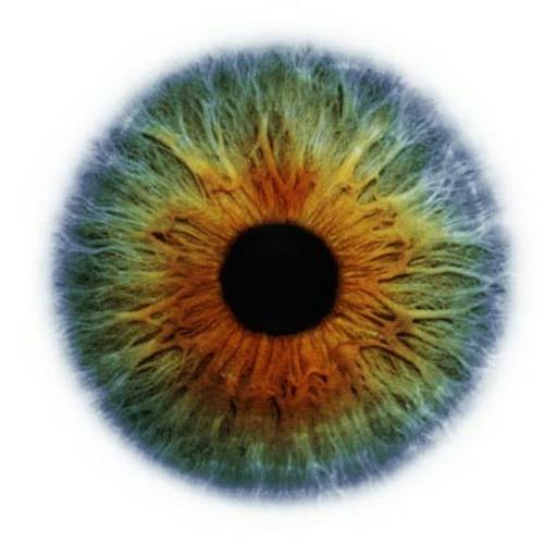 "U-Recken-""Eye of the beholder"""