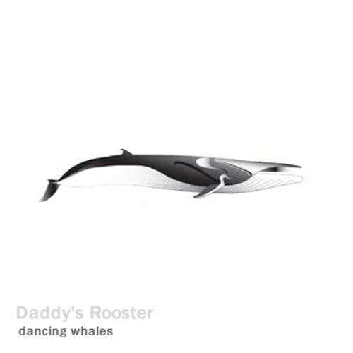 Dancing Whales - Relaxing Chillout Tune