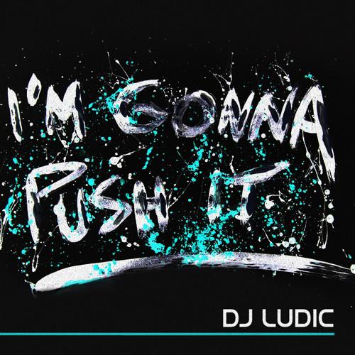 DJ Ludic - I'm Gonna Push It