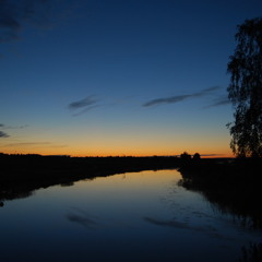 midnight chorus, Ahja river late June
