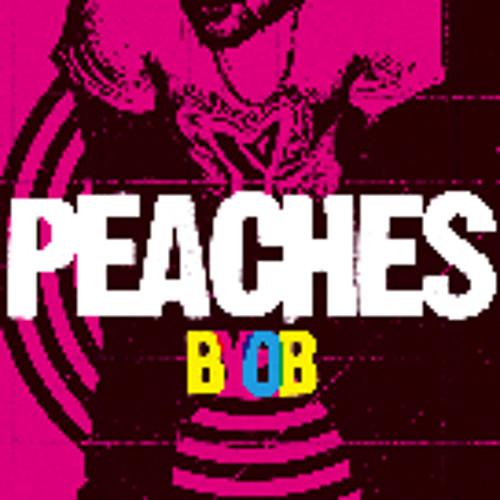 BYOB - Peaches(Kill frenzy remix)