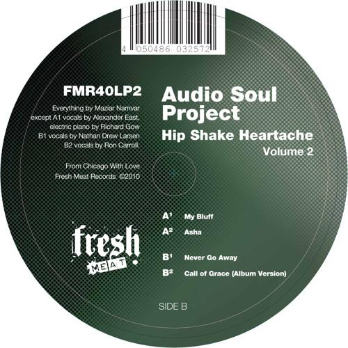 Audio Soul Project - Call of Grace (Album Version) (Clip)