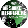 Audio Soul Project - Asha (Clip)