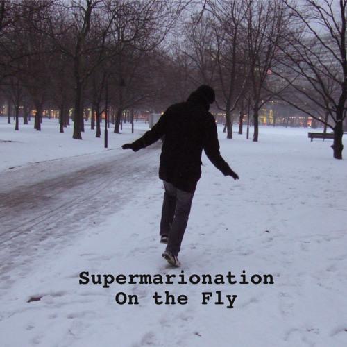 On the Fly Sampler