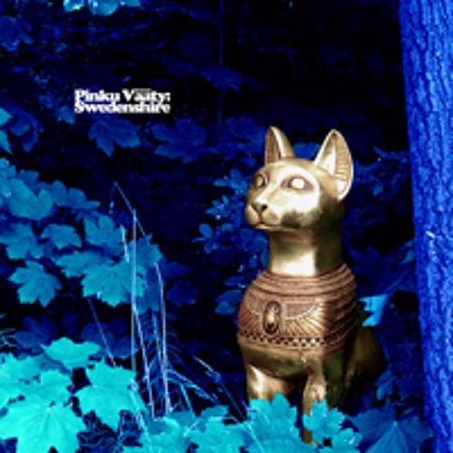Swedenshire (Tora Vinter Remix) - Pinku Väätu
