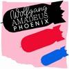Phoenix - Lisztomania (Shook Remix) mp3
