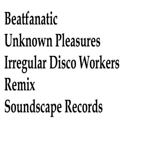 Beatfanatic - Unknown Pleasures (Irregular Disco Workers Remix)