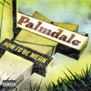 Palmdale - Things I Think About On Planes