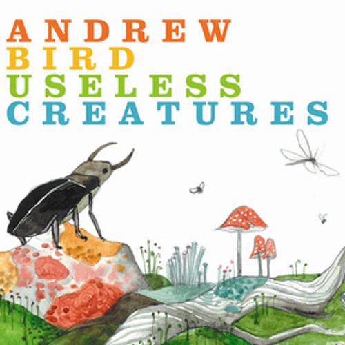Andrew Bird: Hot Math