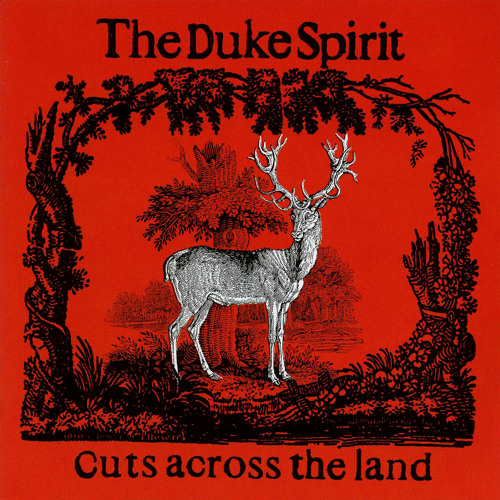 The Duke Spirit - Love is an Unfamiliar Name