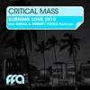 Critical Mass - Burning Love (R3hab Remix)