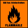 SkH feat. Cristine Croitoru - Flammable(extended)