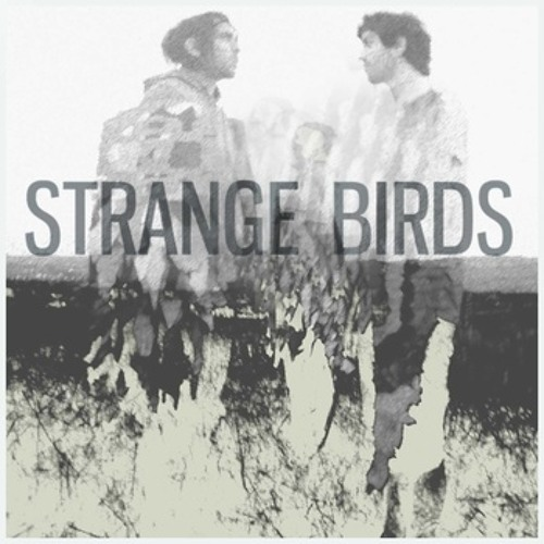 Strange Birds - Summerbirds